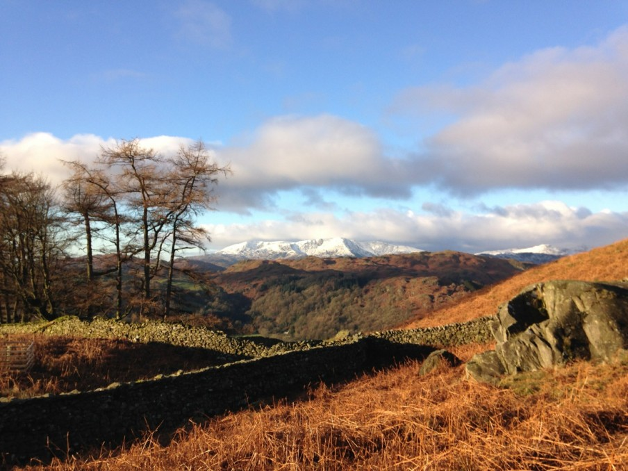 Poetry in Motion 3